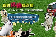 毛小孩大放閃,U-CAR寵物相片票選熱情開催!