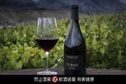 《純淨天然》雲霧之灣全新系列黑皮諾紅酒-Te Wahi